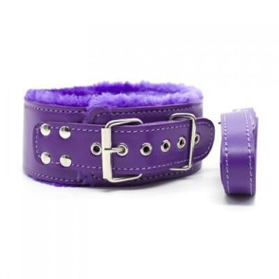 Фиолетовый ошейник с мехом и с поводком