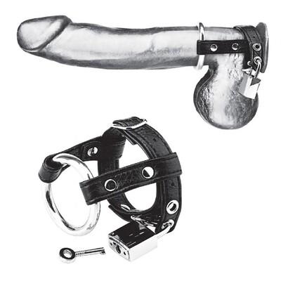Металлическое кольцо с креплением за мошонку