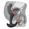 Перезаряжаемый стимулятор простаты с вибрацией Rechargeable P-spot Prober